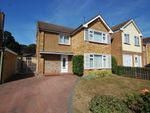 Thumbnail for sale in Paignton Avenue, Old Springfield, Chelmsford