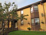 Thumbnail to rent in Dunlop Terrace, Ayr
