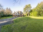 Thumbnail for sale in Chillies Lane, Crowborough, East Sussex