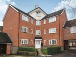 Thumbnail to rent in Elvetham Rise, Chineham, Basingstoke