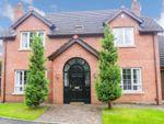 Thumbnail to rent in Carnreagh Mews, Hillsborough