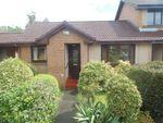 Thumbnail to rent in Crosslee Park, Crosslee, Johnstone