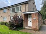 Thumbnail to rent in Room 2, Alyssum Walk, Colchester, Essex