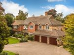 Thumbnail to rent in Lunghurst Road, Woldingham, Caterham
