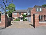Thumbnail to rent in Sundridge Avenue, Bromley, Kent