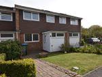 Thumbnail to rent in Lower Swanwick Road, Swanwick, Southampton