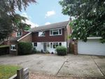 Thumbnail to rent in Horsham Road, Crawley, West Sussex.