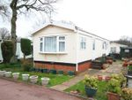 Thumbnail to rent in Bluebell Woods Park, Broad Oak, Canterbury