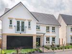 "Thumbnail to rent in ""Colville"" at Haddington"