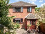 Thumbnail for sale in Eling Lane, Totton, Southampton