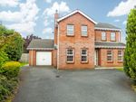 Thumbnail to rent in Beechfield Lodge, Aghalee, Craigavon