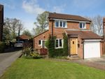 Thumbnail for sale in Sherbrooke Close, York