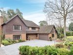 Thumbnail for sale in Hollybush Ride, Finchampstead, Wokingham, Berkshire