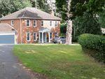 Thumbnail for sale in Fernhill Close, Melton, Woodbridge