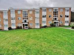 Thumbnail for sale in Haig Court, Chelmsford