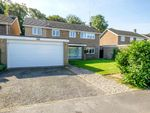Thumbnail for sale in St. Hughs Road, Buckden, St. Neots