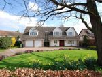 Thumbnail for sale in Coggeshall Road, Earls Colne, Essex