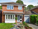 Thumbnail to rent in Wendover Heights, Old Tring Road, Wendover, Aylesbury