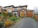 Thumbnail to rent in Old Mill Close, Dundonald, Belfast