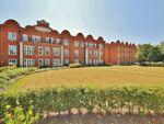 Thumbnail to rent in Gresham Park Road, Old Woking, Surrey