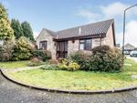 Thumbnail for sale in Bumble Close, Rochester, Kent, Uk