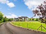 Thumbnail to rent in Laurelhill Road, Dromore, County Armagh