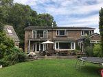 Thumbnail to rent in Hazel Grove, Arundel