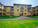 Thumbnail to rent in Brampton Road, Huntingdon