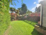 Thumbnail for sale in Bennetts Avenue, Shirley, Surrey