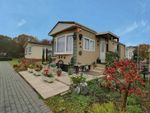 Thumbnail for sale in Dome Caravan Park, Lower Road, Hockley