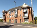 Thumbnail to rent in Starling Grove, Birmingham