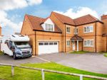 Thumbnail to rent in Jesse Close, Selby
