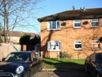 Thumbnail to rent in Dianthus Court, Woking