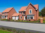 "Thumbnail to rent in ""Cambridge"" at Ripon Road, Kirby Hill, Boroughbridge, York"