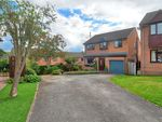 Thumbnail for sale in Camerory Way, New Whittington, Chesterfield
