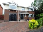 Thumbnail to rent in Lambert Avenue, Dundonald, Belfast