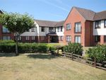 Thumbnail to rent in Priory Park, Botanical Way, St Osyth