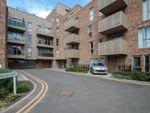 Thumbnail to rent in Scholars Court, Harrison Drive, Cambridge