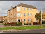 Thumbnail to rent in Chandlers Court, Victoria Dock, Hull