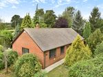 Thumbnail to rent in The Paddocks, Marden, Hereford