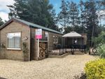 Thumbnail for sale in Cliffe Country Lodges, Cliffe Common, Selby