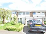 Thumbnail for sale in Oakley Close, Isleworth