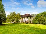Thumbnail for sale in Whitemans Green, Cuckfield, Haywards Heath, West Sussex