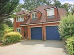Thumbnail to rent in The Avenue, Ascot