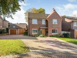 Thumbnail to rent in Greencroft, Guildford