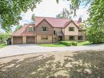 Thumbnail for sale in Duchess Drive, Newmarket