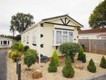 Thumbnail to rent in Central Drive, Oaktree Park, Ringwood, Hampshire