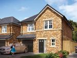 "Thumbnail to rent in ""The Newton"" at Elms Way, Yarm"