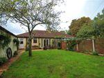 Thumbnail for sale in Celia Crescent, Ashford, Surrey