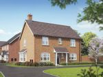 "Thumbnail to rent in ""The Wilshire"" at Campden Road, Shipston-On-Stour"